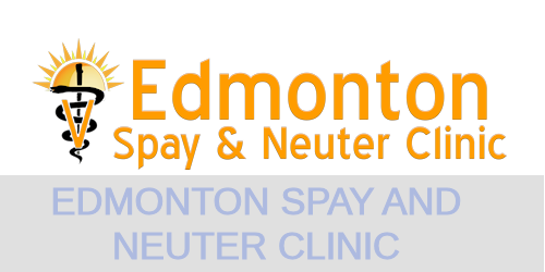 Edmonton Spay and Neuter Clinic